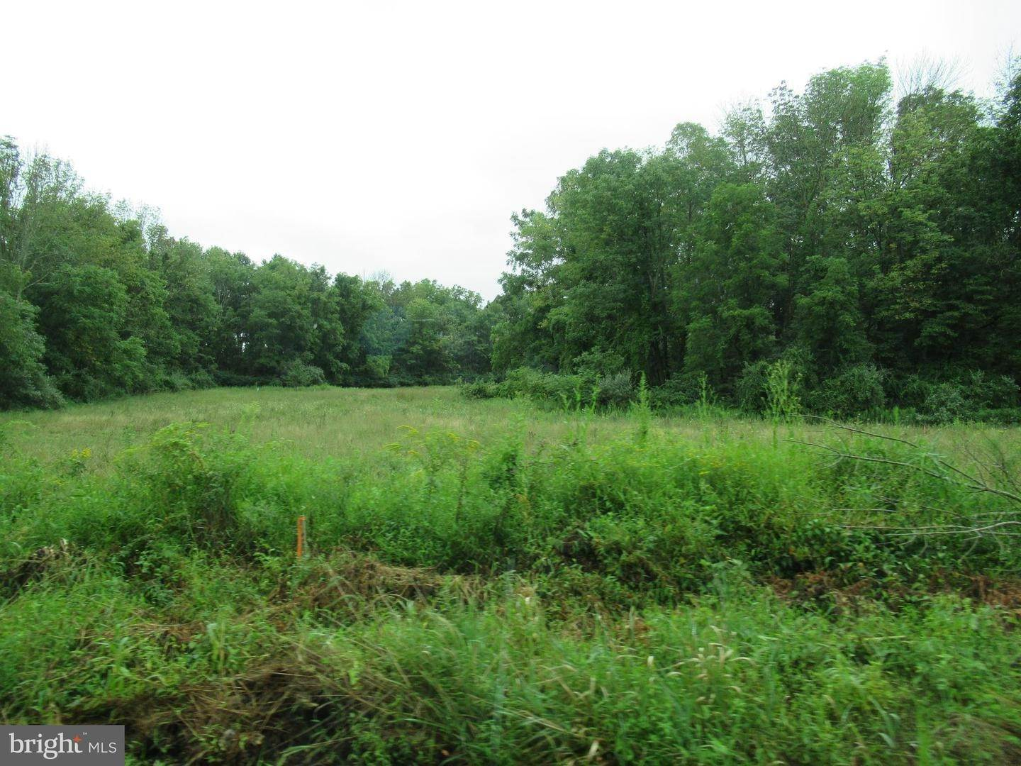 4. Land for Sale at ROUTE 313 Quakertown, Pennsylvania 18951 United States