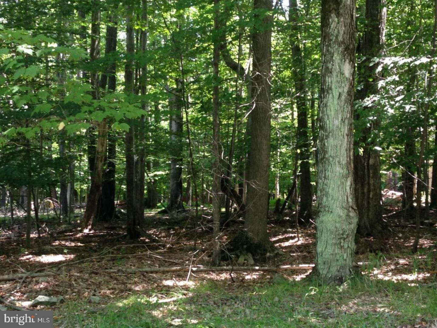 Land for Sale at 0 BLUEBELL Road Williamstown, New Jersey 08094 United States