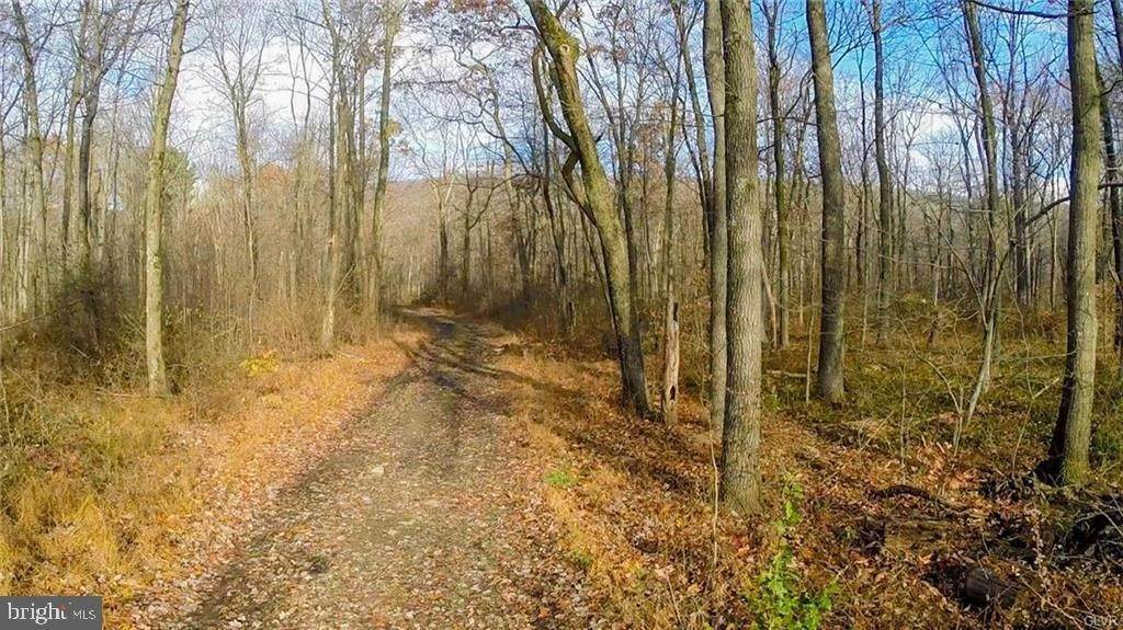 Land for Sale at 9100 LOOP RD N Slatington, Pennsylvania 18080 United States